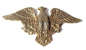 196123  USA Eagle Brooch - Product Image
